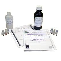 Electrophoresis: Agarose Gel Separation of Dyes Kit